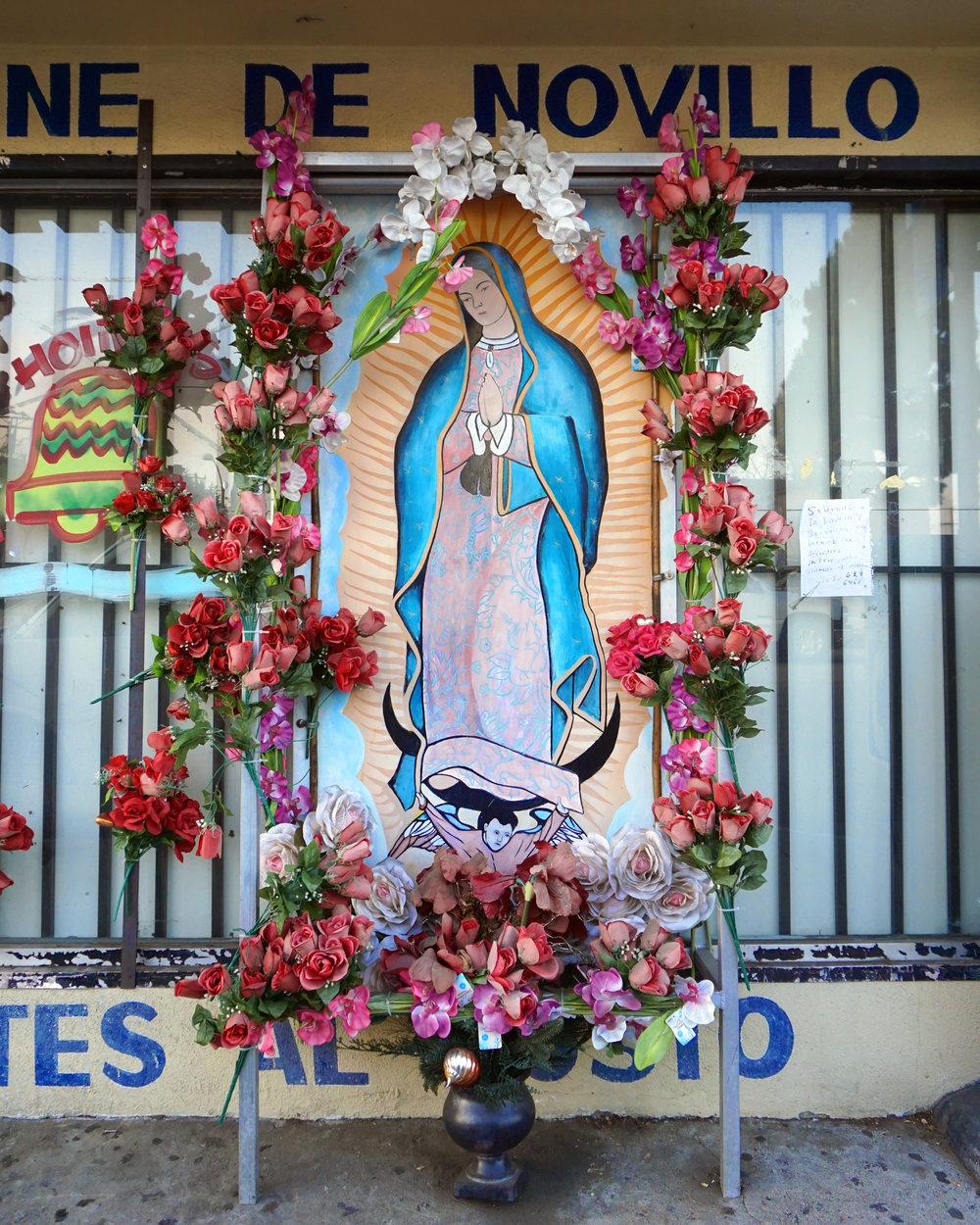 Guadalupe_Store_LEnnox.jpg