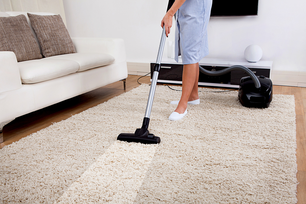 CleaningServiceClearCauseCleaners
