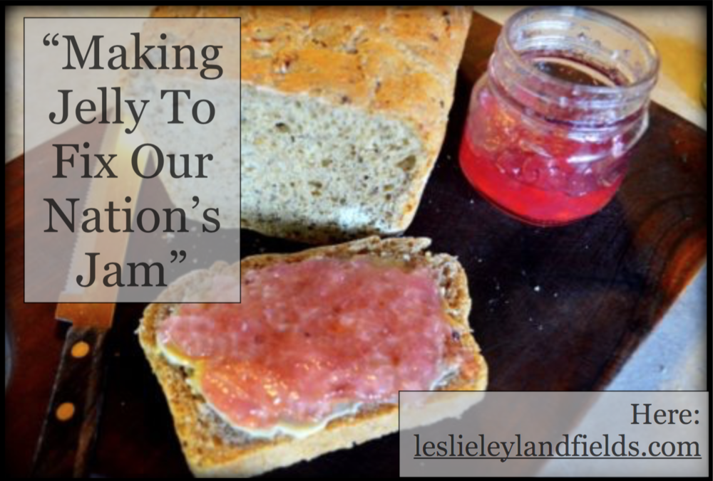 Making Jelly To Fix Our Nation's Jam.png