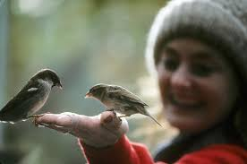 woman feeding birds in hand.jpeg