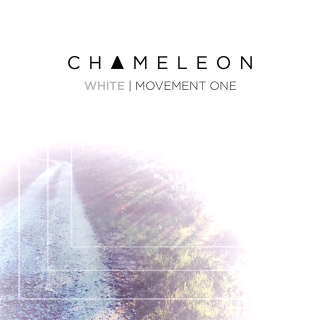 Our most ambitious project yet. Get ready for something different this winter. #chameleon #newmusic #abbevillesc #autobiography #fuckcancer