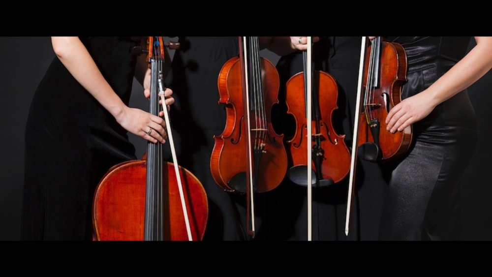STRINGS - SOLO TO QUARTET$400* and up.