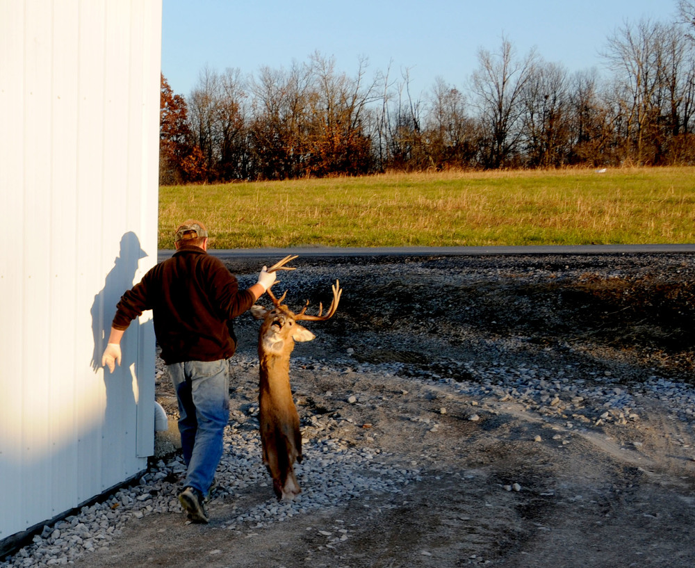Jim McIntosh takes a prepared deer into his shop, 'Jims New Life Taxidermy' in Morgantown, Kentucky, on Friday, November sixteenth, to be further prepared for creating a wall mount. For an extra fee, McIntosh will help skin a deer outside his shop. McIntosh has, on average, a years worth of back-ordered taxidermy jobs in his shop.