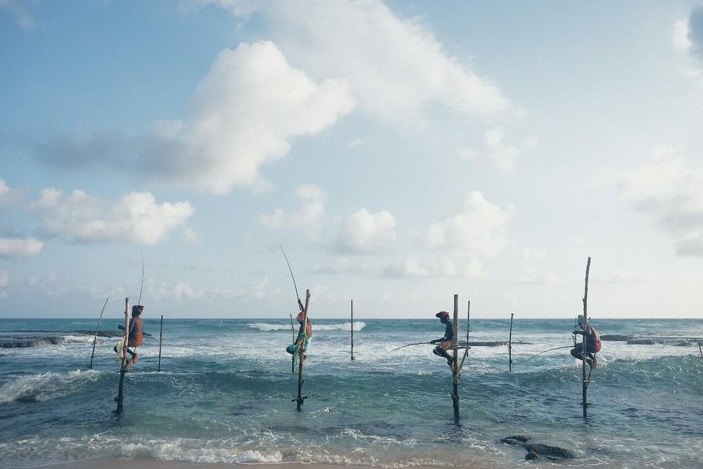 Stilt fishing | Talpe, Sri Lanka