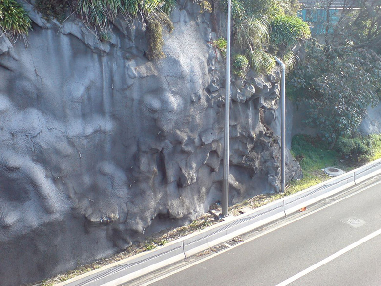 Figure 5.  Shotcrete-stabilized cliff in New Zealand.