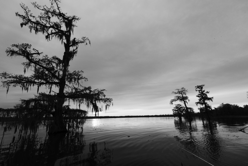 lake_martin_louisiana_cajun_swamp_new_iberia_brei_olivier_travel_photography_landscape_culture_beautiful_la_parish_st_martinville_new_orleans_photographer_4.jpg