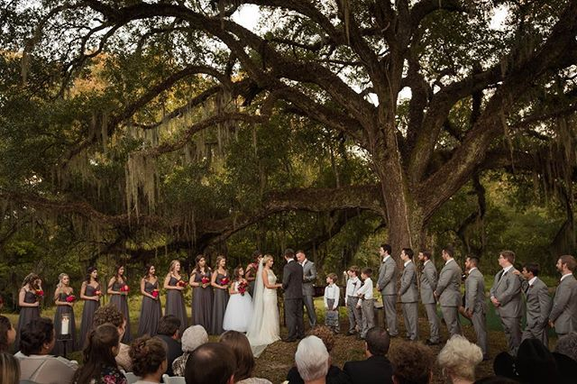 Oak trees are powerful, strong, and protective...they remind me a lot of Love ✌️ . . . . . #agameoftones #artifactuprising #authenticlovemag #belovedstories #elopementphotographer #lowcountrywedding #heyheyhellomay #lookslikefilm #magnoliarouge #neworleanswedding #ohwowyes #pursuingthelove #radlovestories #savannahga #theknot #thehappynow #theweddinglegends #fearlessphotographer #bohobride #weddingday #wednola #stfrancisville #weddinginspo #southernweddings #loveislove