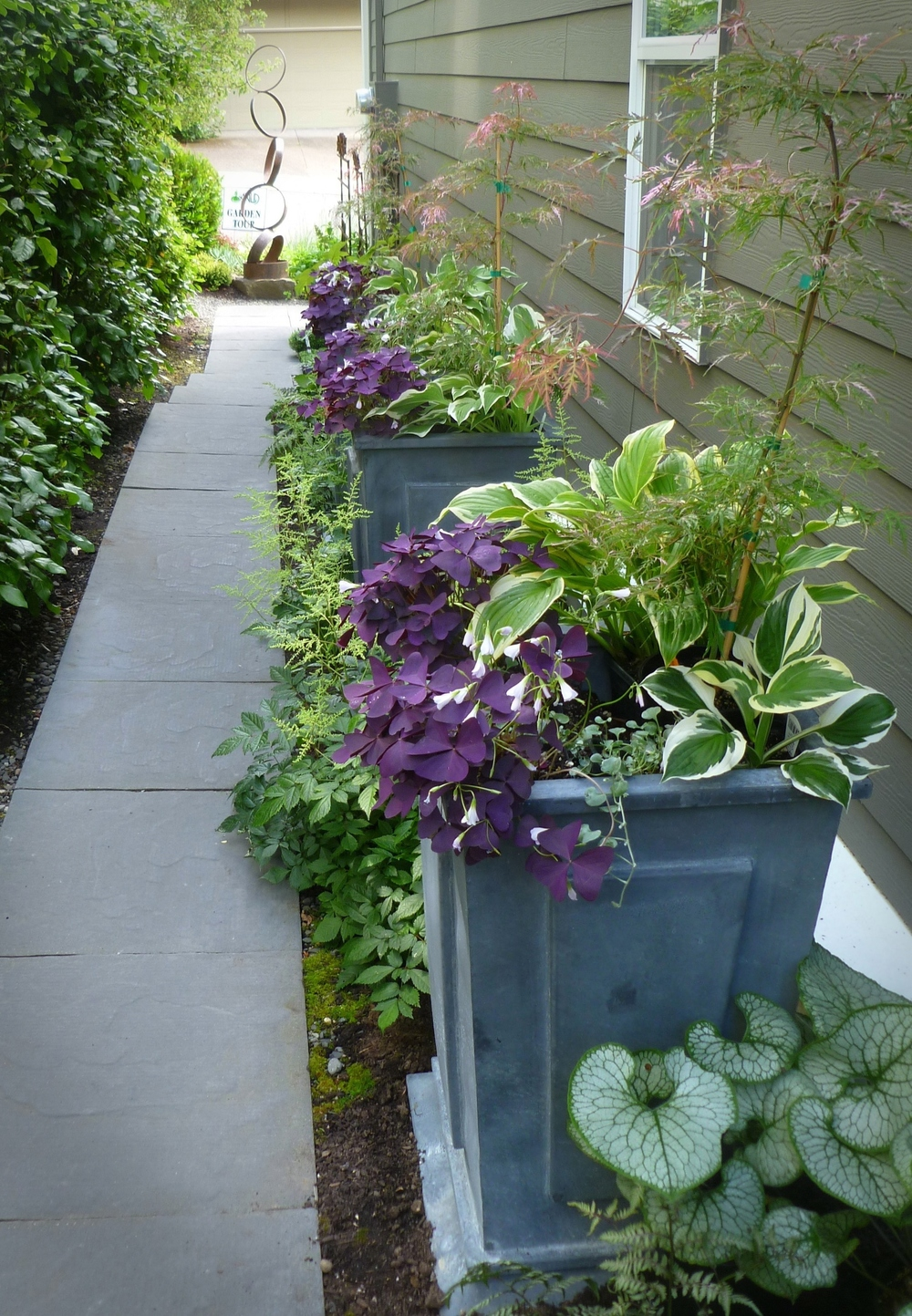 The Leon side yard, only 4 feet wide, is maximized with a trio of upright containers, designed by Alyse.