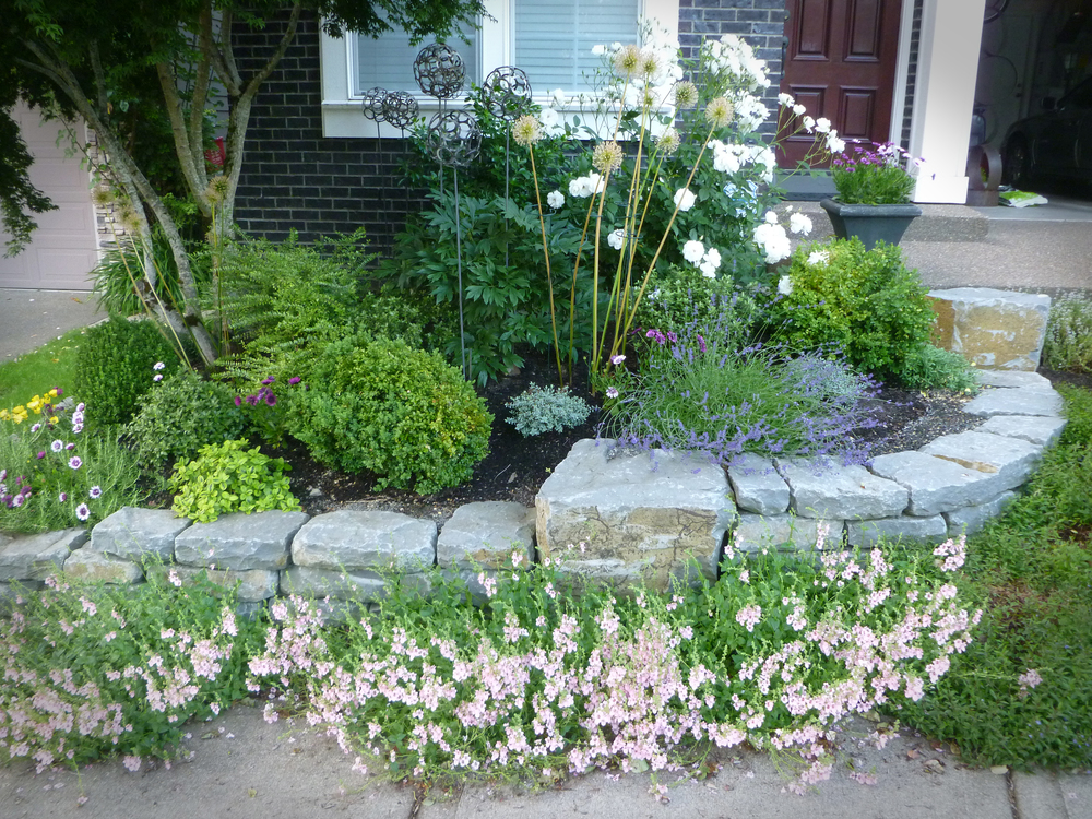 Front yard inspired by French designs the homeowners love, using a stepped down retaining wall to tie the landscape in with the slope.