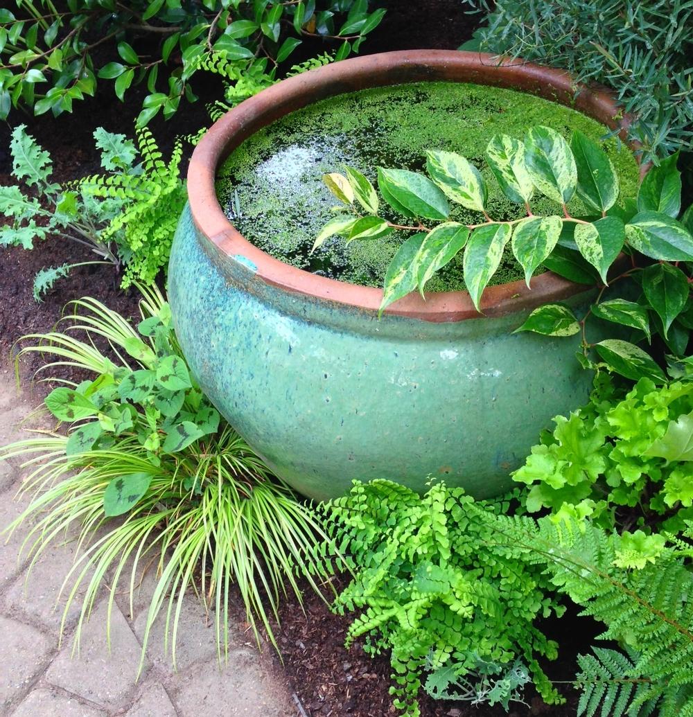 Garden designs by alyse