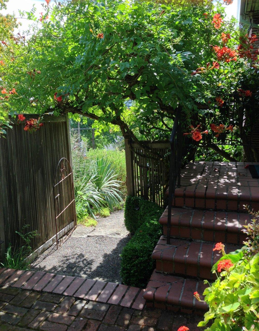 Carson Garden