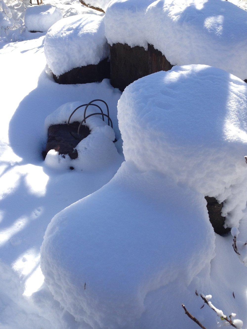 AlyseLansing_snowpatterns6