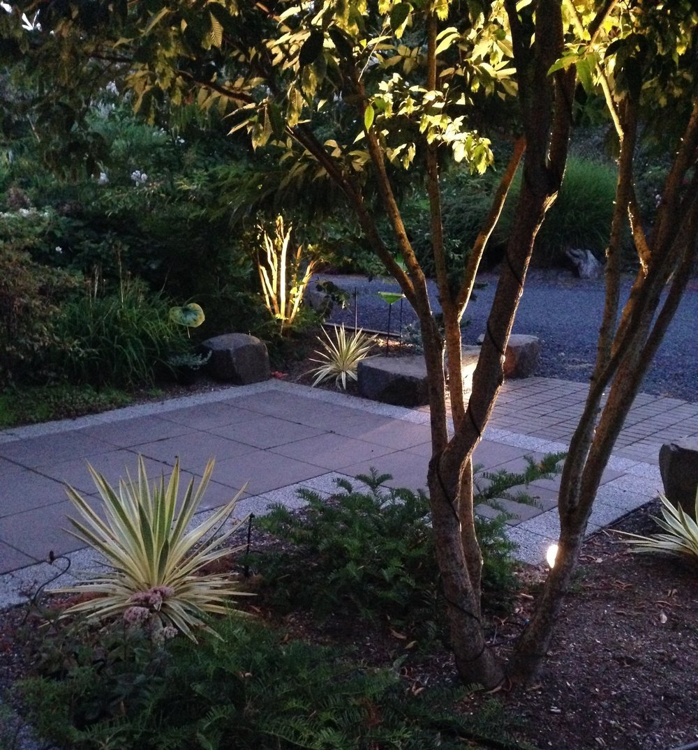 2016-08-09 20.44.54-fx-ro oyd entry landscape lighting.jpg
