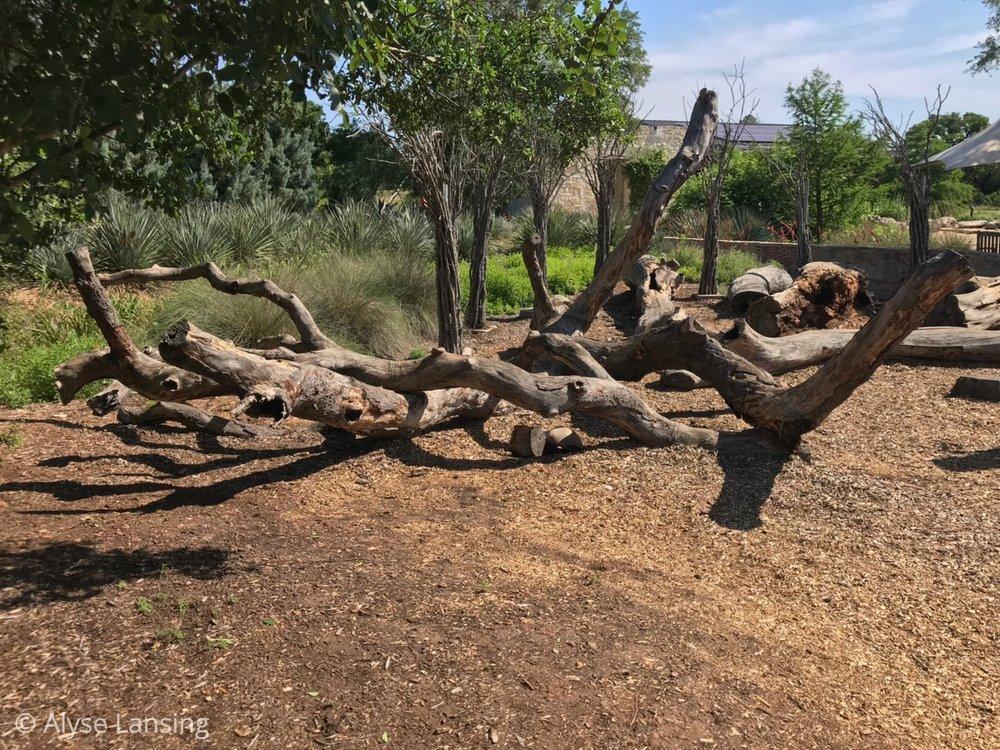 Instead of jungle gyms, climbing logs.