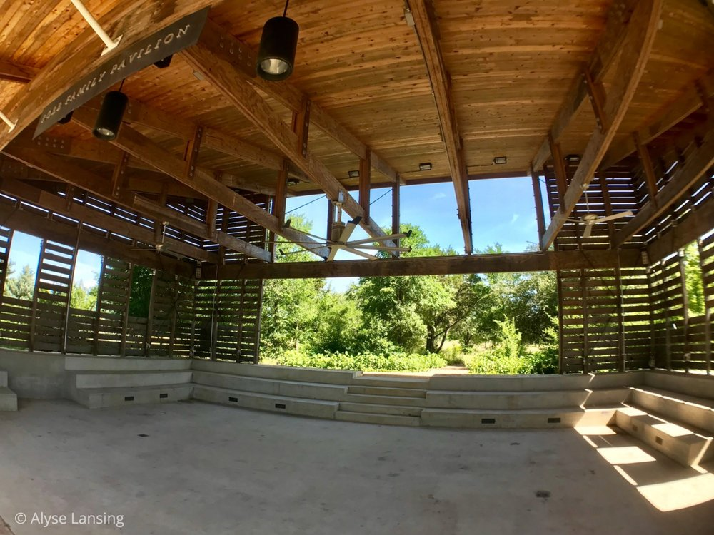 In this open-air pavilion, I stopped to admire the walls' patterns and the built-in amphitheater seating that also happens to be the building's foundation. A good teaching space. And then—above—what's this?…