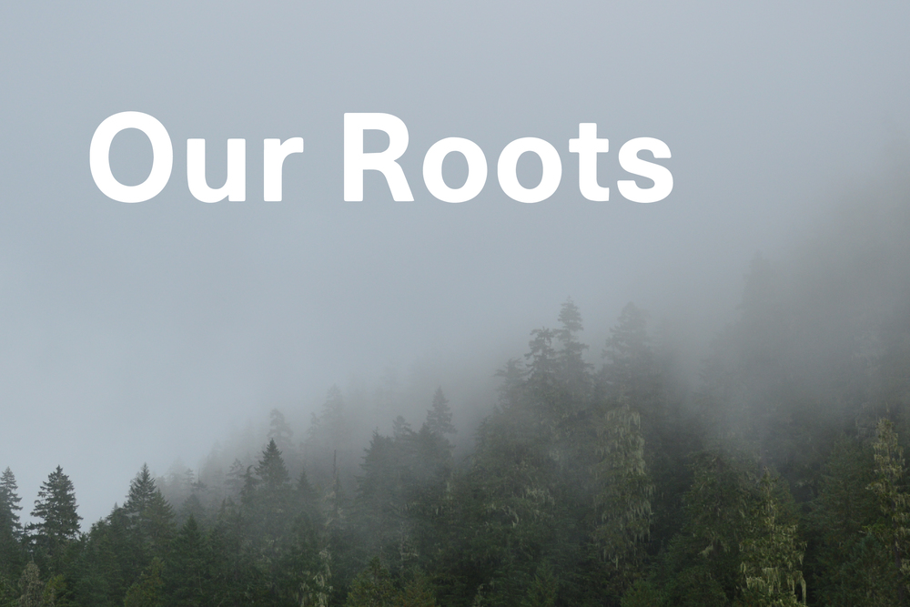 our-roots.jpg