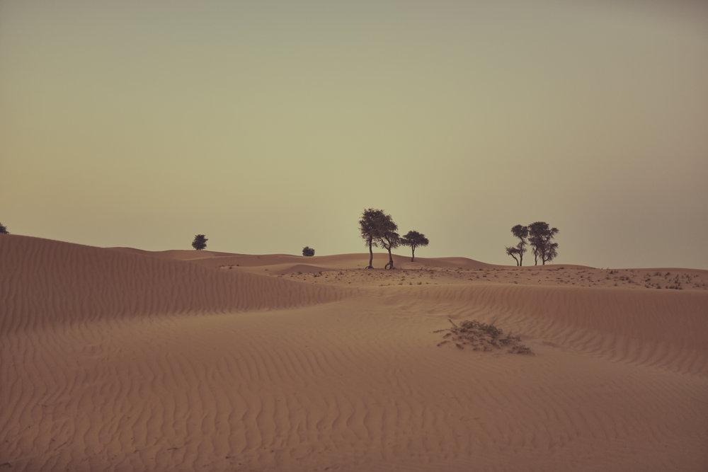 Al Qudra, UAE