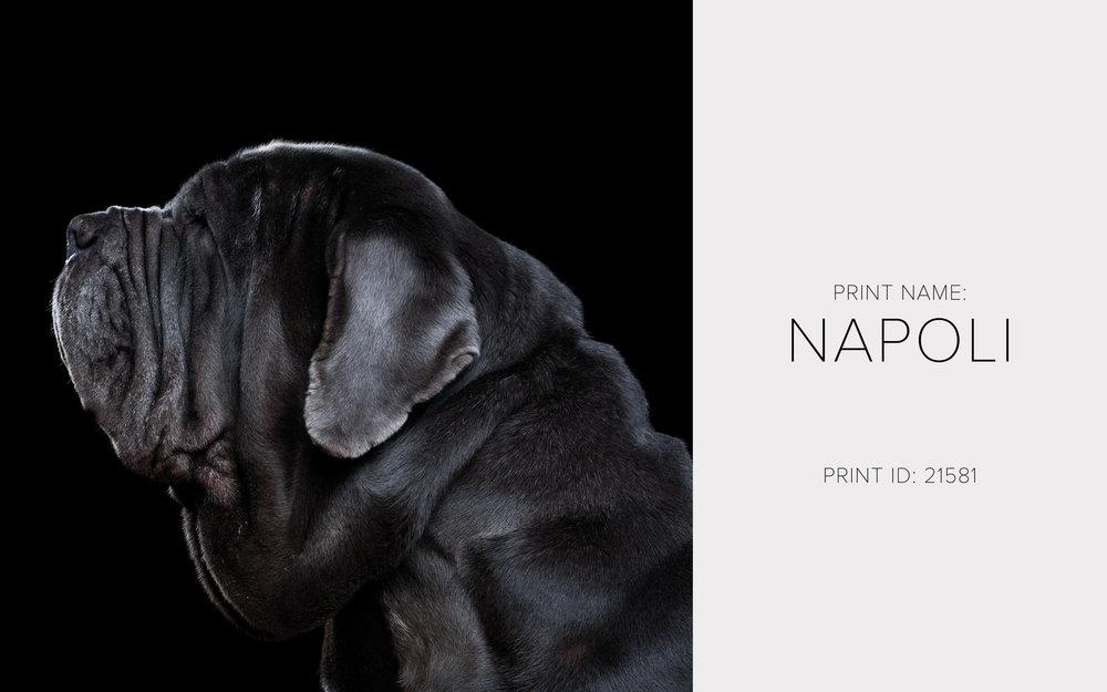 Napoli_Thumb.jpg