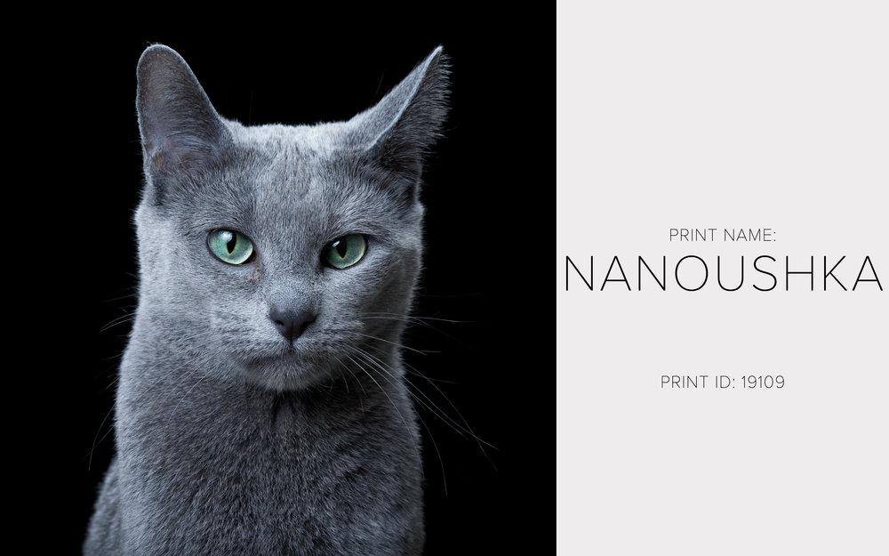 Nanoushka_Thumb.jpg