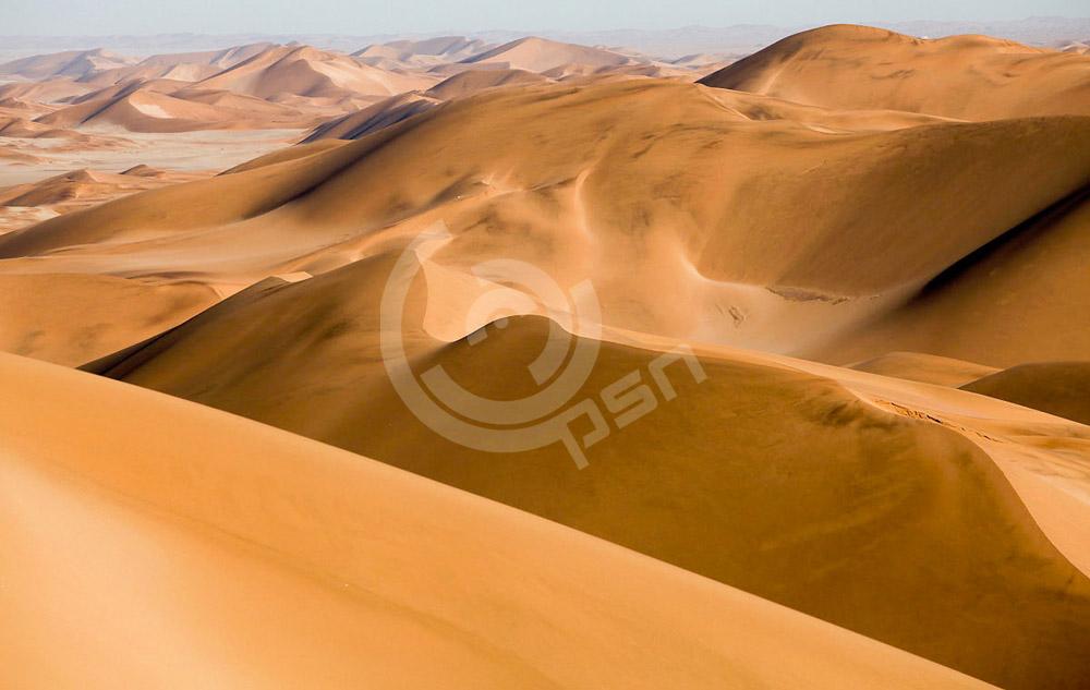 SouthAfrica-3.jpg