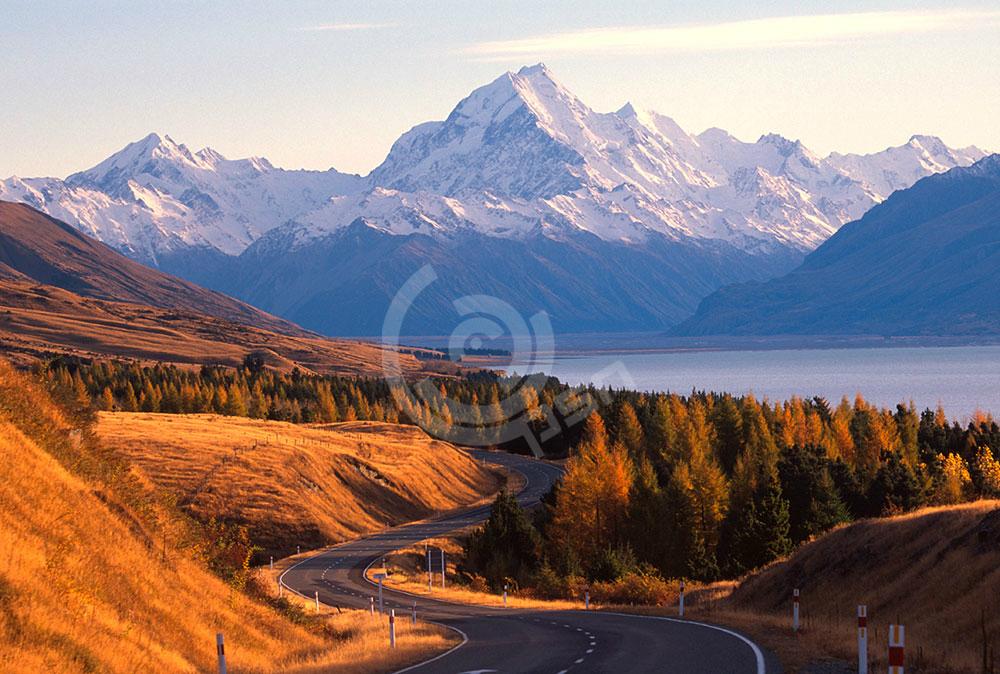 newzealand-3.jpg