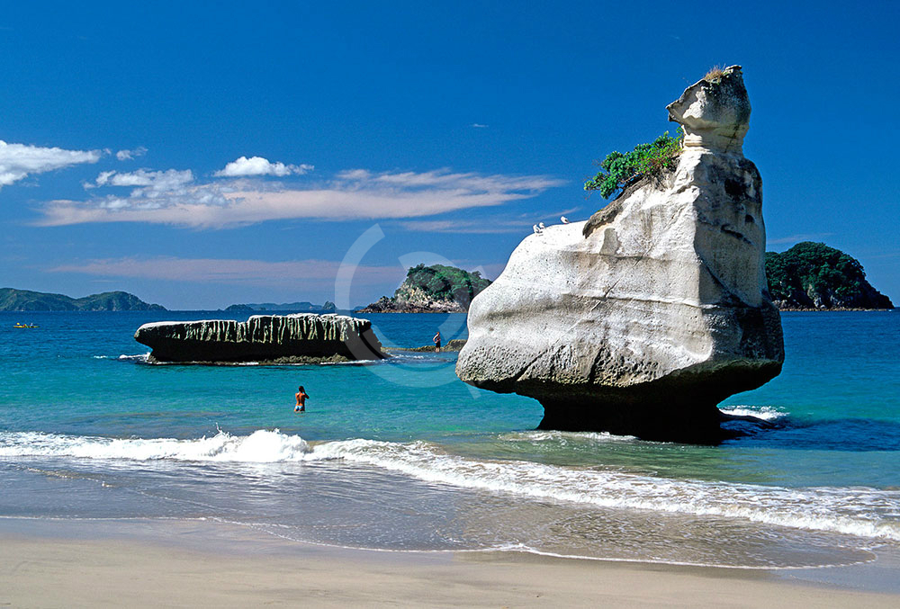 newzealand14.jpg