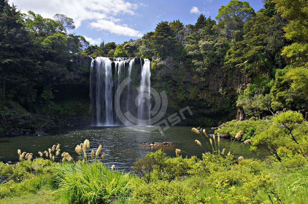 newzealand23.jpg