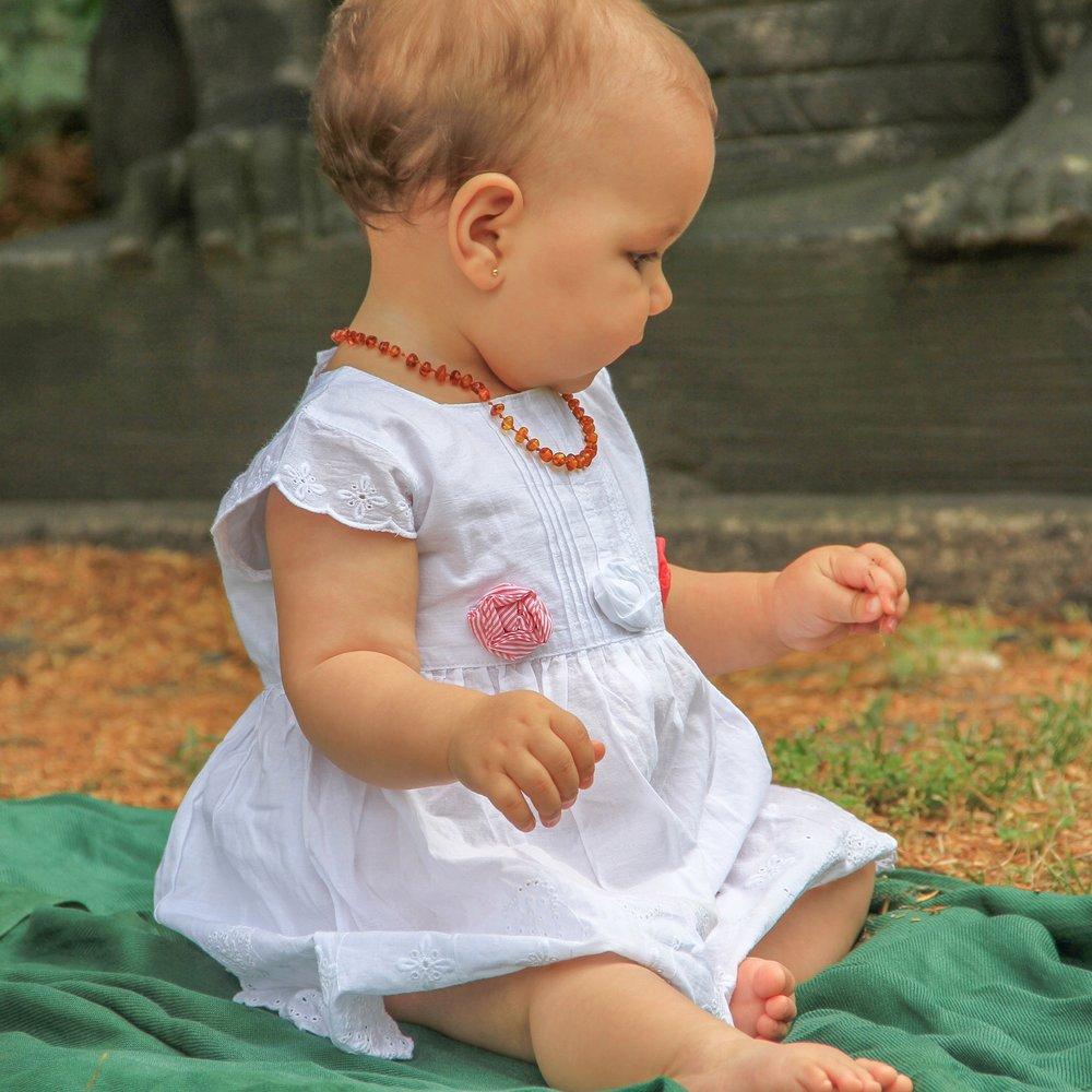 Olivia e o colar de âmbar