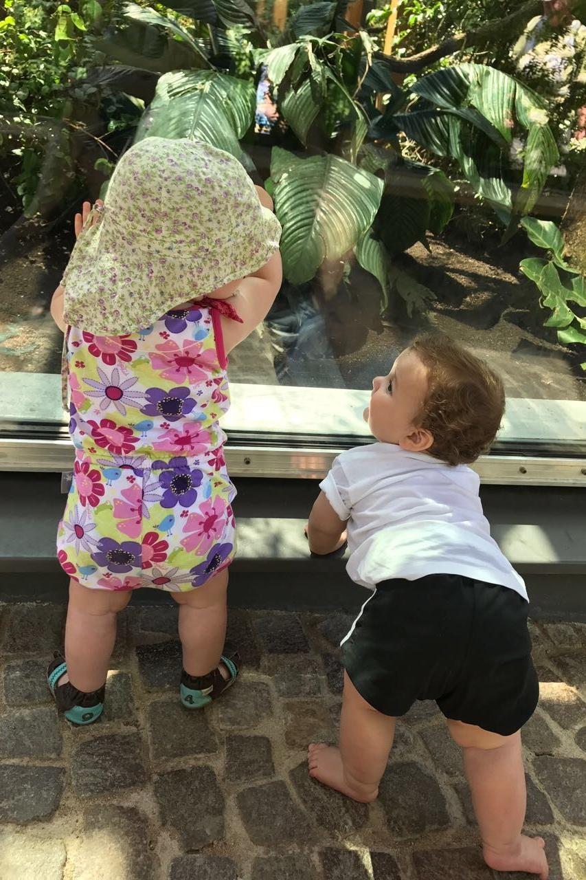 Lio e a amiga