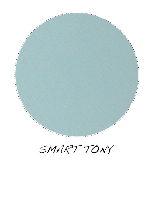bluey2.jpg