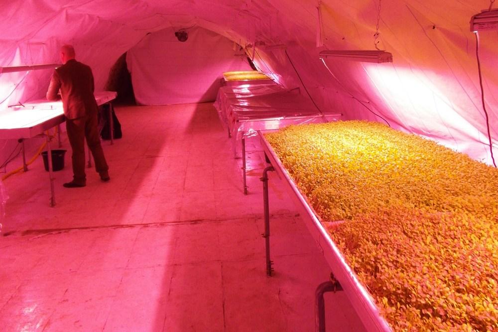 Underground_farm_02.jpg