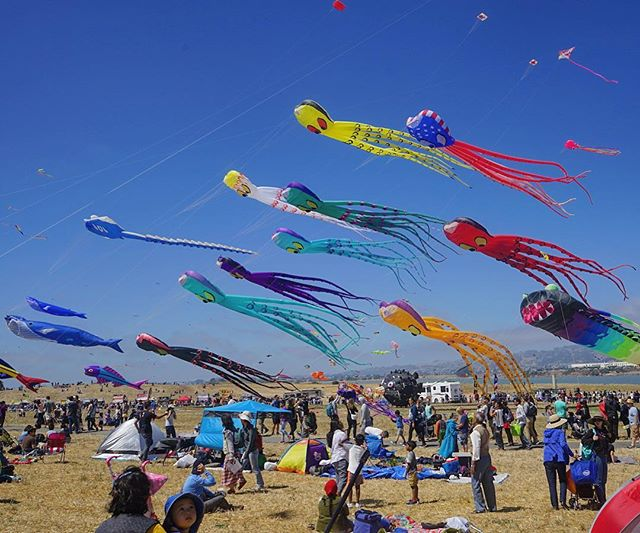 One of my favorite events on the planet, the #BerkeleyKiteFestival, was this weekend. Hundreds of colorful pieces of airborne artwork, only attached to earth by the fortitude of very long, strong strings. It brings the little kid out of me every time!  #Berkeley. #BerkeleyMarina. #InnerKid. #BigKid. #everydaybayarea. #catchlighteveryday. (Photo by @OGpenn)