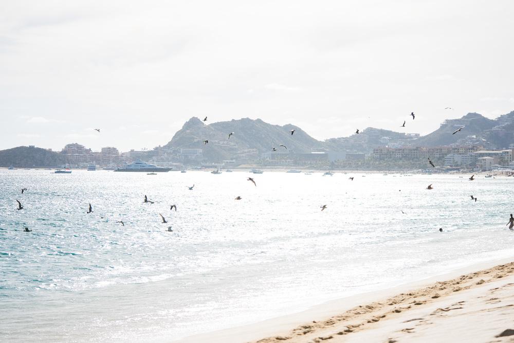Cabo2016-58.jpg