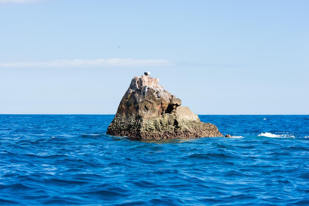 Cabo2016-129.jpg