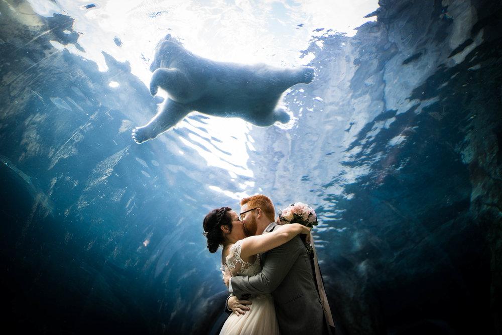 Ashley and Simon - Assiniboine Park Zoo Wedding - Cojo Photo-1343.jpg