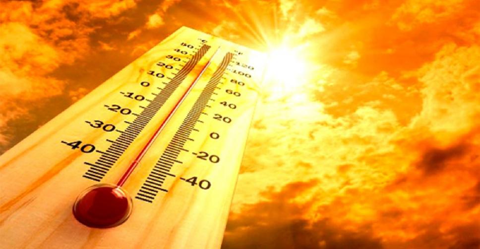 summer heat.jpg