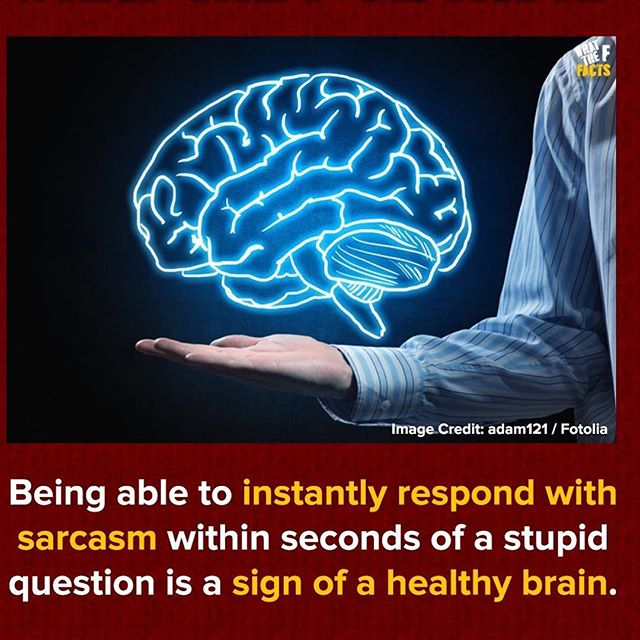 Tag someone who has a healthy brain 🙋🏿‍♂️🙋🏿‍♂️