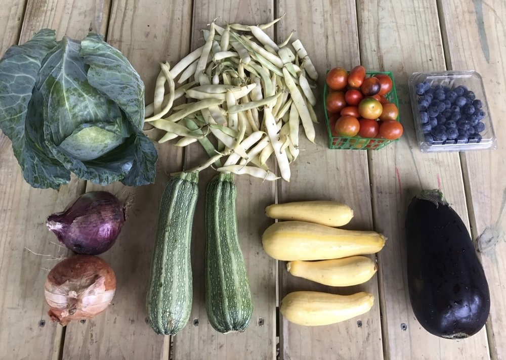 Top Row: Cabbage, Romano Beans, Cherry Tomatoes, and Blueberries  Bottom Row: Onions, Zucchini, Squash, and Eggplant