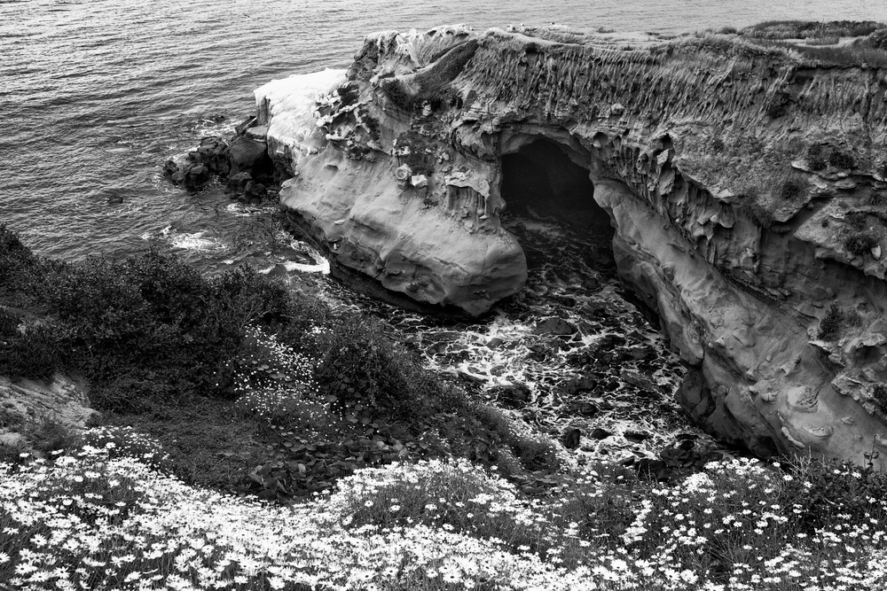 A cave at the La Jolla Cove.