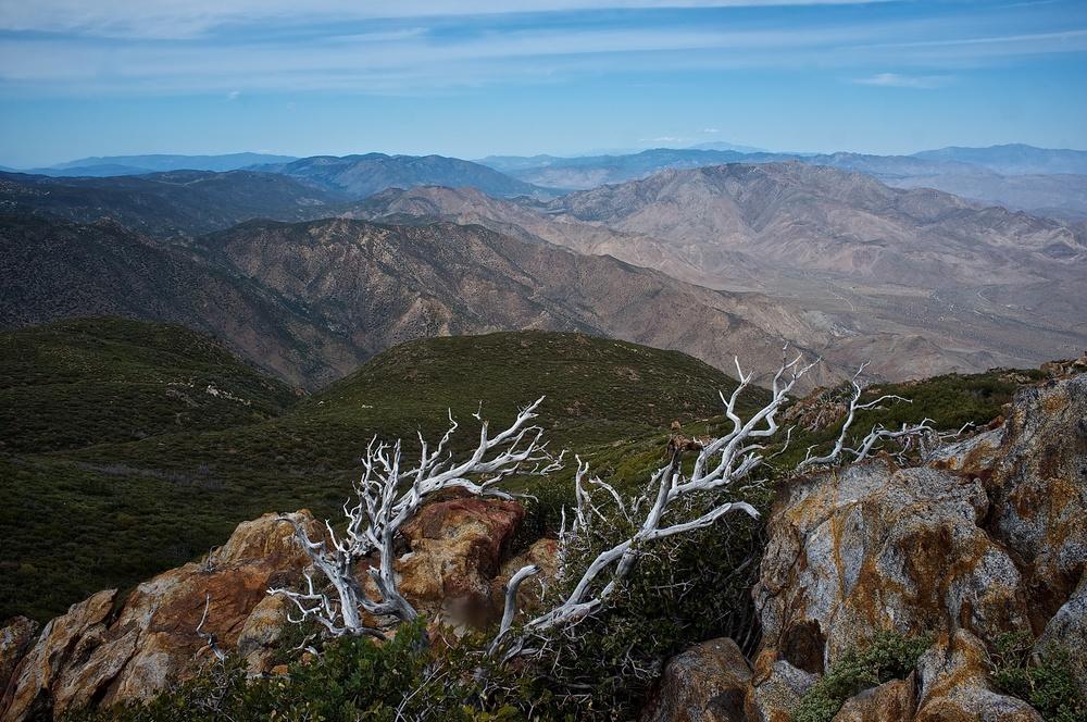 The view from Garnett Peak in the Laguna Mountains.