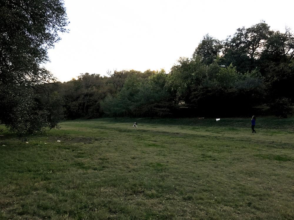 SCOUT_Shoal_Creek-IMG_283328332017.jpg