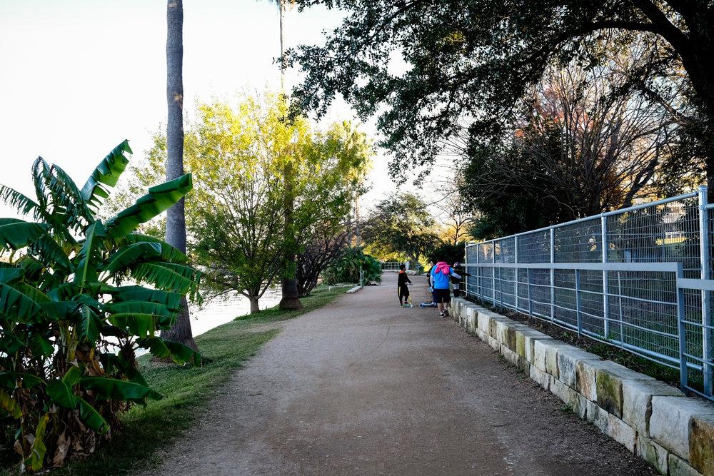 Scout_TL-Boardwalk-_DSF779277922017.jpg