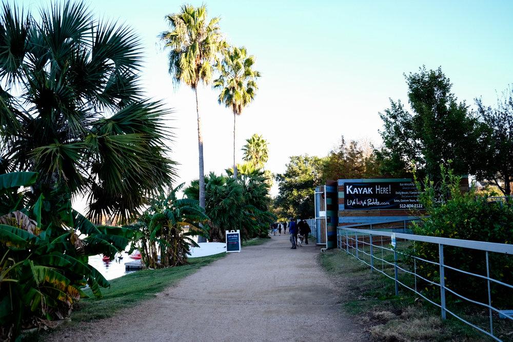 Scout_TL-Boardwalk-_DSF777477742017.jpg