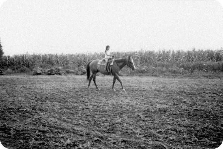 Aja & Horses part 2-001