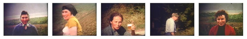 Potatao Harvest 1966