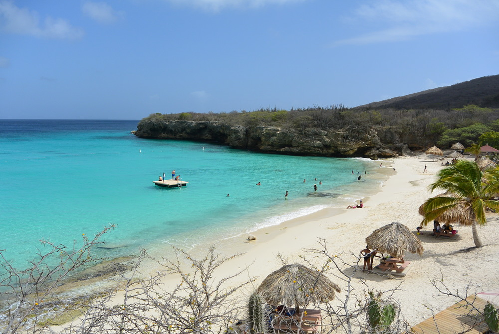 curacao-grote-knip