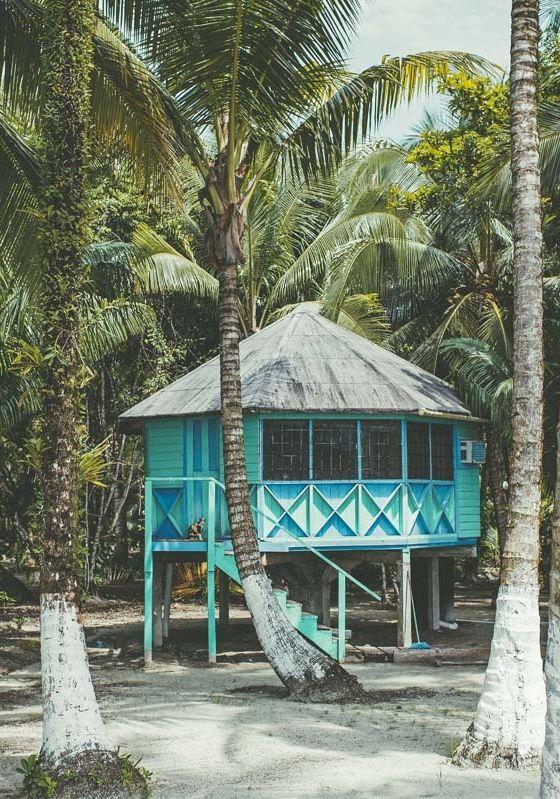 beach shack 4.jpg