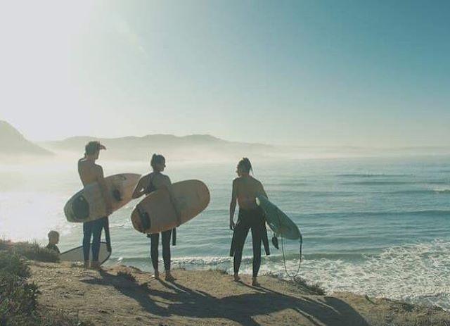 🐠🐟🐬 • • • • #dakhla #essaouira #essaouiratrips #exploremorocco #surflove #surfsession #surfspot #surftrip #imsouane #surf #surfboard #surfer #surfers #surfinglifestyle #surfingparadise #surfingphotography #surflife #surfing #gonesurfing #imsouane #surfholiday #surfsession #surfspot #surftrip #taghazout #taghazoutbeach #tamraght #surfmaroc #sfx #amazing