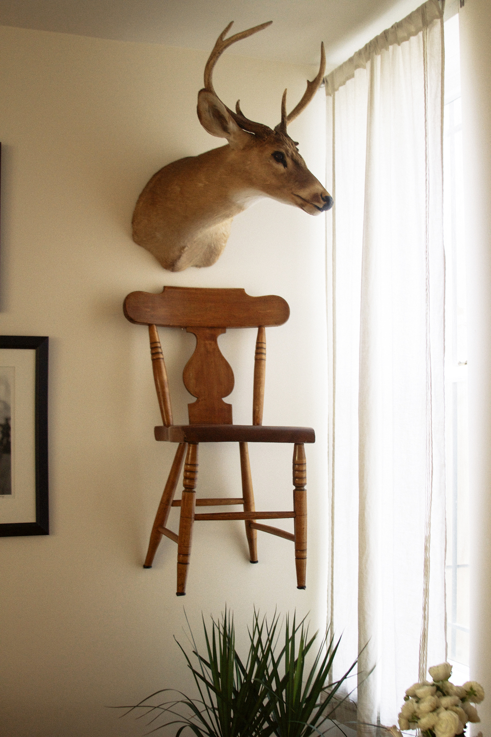 Over the years I've lived in some tiny spaces, so I've borrowed from the Shaker tradition and hung chairs on the walls to save room.