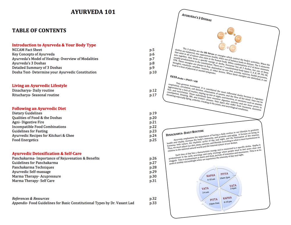 ayurveda 101 handouts sampler.jpg
